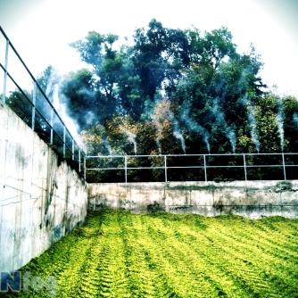 Odstraňovanie zápachu na bioplynke